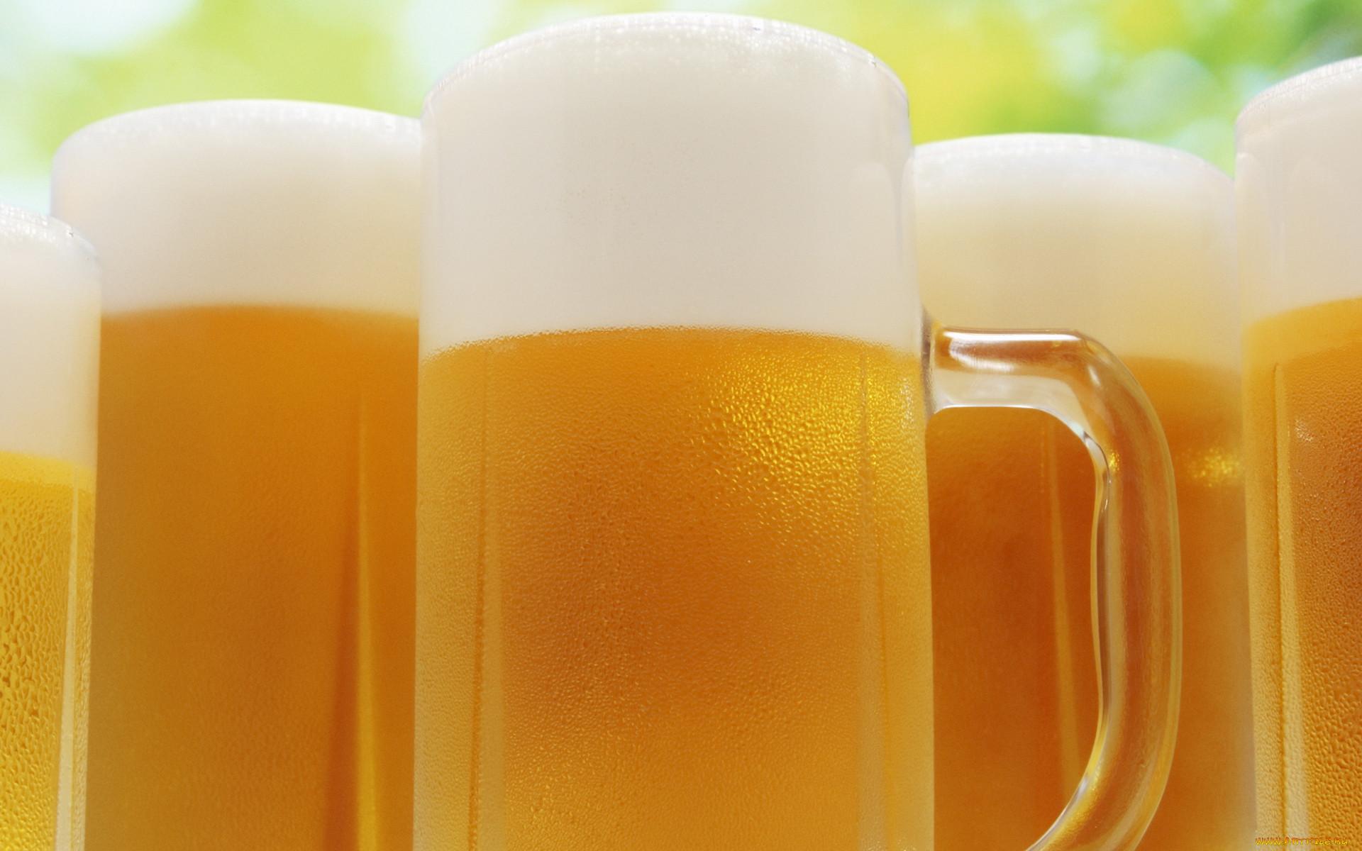 Пиво пенное картинка